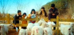 A Werewolf Boy - playing   (11) Cheol-su, Suni & kids feed paper to goats