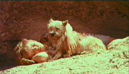 Dirkie & Fifi _Lost In the Desert