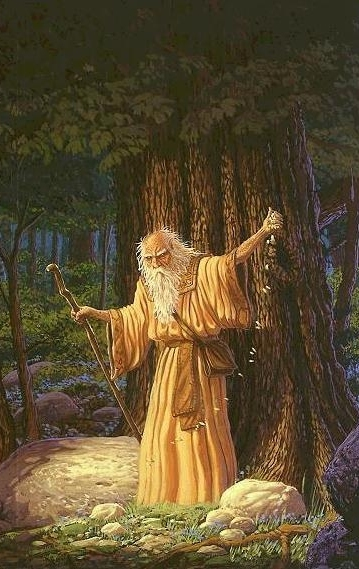 a druid, bard, or poet