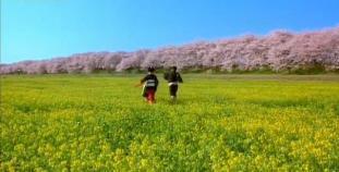 0.  Seiji & Kiyoha happiness