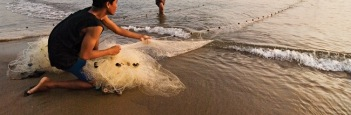 beach (8)