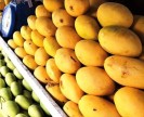 mangoes for sale